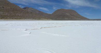 Arce firmará con Argentina un acuerdo de cooperación técnica para desarrollar la industrialización del litio